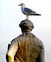 Sir Humphry Davy Gets The Bird